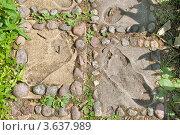 """Купить «Следы на дорожке. Парк скульптур """"Мистический лес"""". Финляндия», эксклюзивное фото № 3637989, снято 23 июня 2012 г. (c) Александр Щепин / Фотобанк Лори"""
