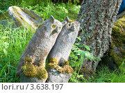 """Купить «Две совы. Парк скульптур """"Мистический лес"""". Финляндия», эксклюзивное фото № 3638197, снято 26 мая 2019 г. (c) Александр Щепин / Фотобанк Лори"""