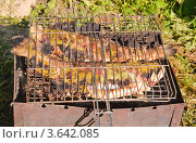 Купить «Приготовление форели на решетке», эксклюзивное фото № 3642085, снято 17 июня 2012 г. (c) Алёшина Оксана / Фотобанк Лори