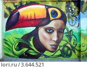Купить «Портрет девушки. Граффити в Санкт-Петербурге», фото № 3644521, снято 3 июля 2012 г. (c) Светлана Колобова / Фотобанк Лори