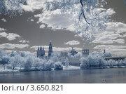 Купить «Новодевичий монастырь», фото № 3650821, снято 25 мая 2012 г. (c) Валерий Пчелинцев / Фотобанк Лори