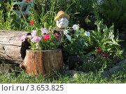 Дачные радости (2012 год). Редакционное фото, фотограф Дмитрий Сарычев / Фотобанк Лори