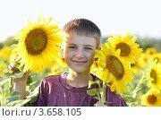 Мальчик в подсолнухах. Стоковое фото, фотограф Julia Ovchinnikova / Фотобанк Лори