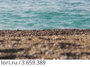 Галька на берегу моря. Стоковое фото, фотограф Александр Довянский / Фотобанк Лори