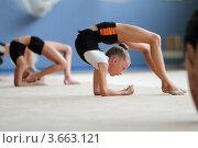 Художественная гимнастика, тренировка (2012 год). Редакционное фото, фотограф Дмитрий Неумоин / Фотобанк Лори
