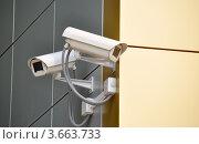 Купить «Две камеры видеонаблюдения на фасаде современного здания», фото № 3663733, снято 9 июля 2012 г. (c) Анна Мартынова / Фотобанк Лори