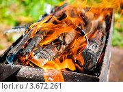 Купить «Горящие дрова в мангале на природе», эксклюзивное фото № 3672261, снято 3 июня 2012 г. (c) Игорь Низов / Фотобанк Лори