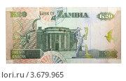 Купить «20 Замбийских квача», фото № 3679965, снято 11 июня 2012 г. (c) Некрасов Андрей / Фотобанк Лори