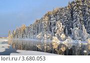 Сибирский зимний лес. Стоковое фото, фотограф Юлия Науменко / Фотобанк Лори