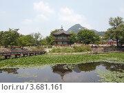 Купить «Восточная беседка павильон стоит на острове в заросшем пруду. Сеул, императорский дворец.», фото № 3681161, снято 8 июля 2012 г. (c) Ольга Липунова / Фотобанк Лори