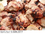Купить «Шашлык», фото № 3686877, снято 1 мая 2009 г. (c) Александр Скопинцев / Фотобанк Лори