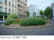 Купить «Цветник на улице Гарибальди, Лион, Франция», фото № 3687161, снято 13 июля 2012 г. (c) Виктория Фрадкина / Фотобанк Лори