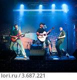 Купить «Группа музыкантов выступает на концерте.», фото № 3687221, снято 11 июля 2012 г. (c) Андрей Армягов / Фотобанк Лори