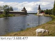 Купить «Псков», фото № 3688477, снято 22 июля 2012 г. (c) Ямаш Андрей / Фотобанк Лори