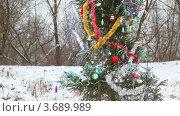 Купить «Наряженная новогодняя елка зимним днем на улице», видеоролик № 3689989, снято 15 июля 2010 г. (c) Losevsky Pavel / Фотобанк Лори
