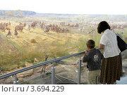 Купить «Москва. Музей Бородинская панорама. Мама с ребёнком в музее.», эксклюзивное фото № 3694229, снято 23 мая 2012 г. (c) Дмитрий Неумоин / Фотобанк Лори