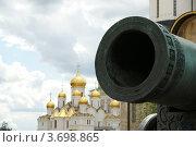 Купить «Царь-пушка, Московский Кремль», фото № 3698865, снято 23 июля 2012 г. (c) Владимир Журавлев / Фотобанк Лори
