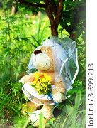 Плюшевый мишка в свадебном платье и с букетом стоит у дерева (2012 год). Редакционное фото, фотограф Светлана Симонова / Фотобанк Лори