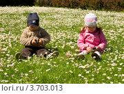 Дети играют с мобильными телефонами в поле с ромашками (2010 год). Редакционное фото, фотограф Константин Примачук / Фотобанк Лори