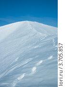 Купить «Снег с дорожкой следов, Хибины», фото № 3705857, снято 31 марта 2012 г. (c) Morgenstjerne / Фотобанк Лори
