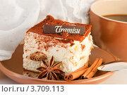 Торт тирамису с чашкой кофе. Стоковое фото, фотограф Лариса Кривошапка / Фотобанк Лори