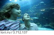 Купить «Женщина и девочка крупным планом в океанариуме», видеоролик № 3712137, снято 17 ноября 2010 г. (c) Losevsky Pavel / Фотобанк Лори