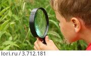 Купить «Мальчик изучает природу с лупой», видеоролик № 3712181, снято 11 ноября 2010 г. (c) Losevsky Pavel / Фотобанк Лори
