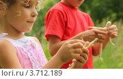 Купить «Мальчик и девочка играют с деревянными куклами», видеоролик № 3712189, снято 3 ноября 2010 г. (c) Losevsky Pavel / Фотобанк Лори