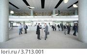 Купить «Деловые люди общаются в холле отеля», видеоролик № 3713001, снято 9 ноября 2010 г. (c) Losevsky Pavel / Фотобанк Лори