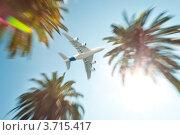 Самолет, летящий над пальмами. Стоковое фото, фотограф Константин Ёлшин / Фотобанк Лори