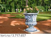 Купить «Ваза с цветами в Летнем саду. Санкт-Петербург», эксклюзивное фото № 3717657, снято 27 июня 2012 г. (c) Александр Щепин / Фотобанк Лори