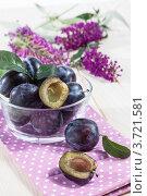 Купить «Чаша со сливами (Prunus insititia)», фото № 3721581, снято 2 июня 2020 г. (c) Marina Appel / Фотобанк Лори