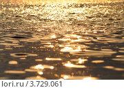 Отражение солнца в морской воде. Стоковое фото, фотограф Александр Довянский / Фотобанк Лори