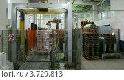Купить «Процесс упаковки на Лианозовском молокозаводе (таймлапс)», видеоролик № 3729813, снято 21 марта 2011 г. (c) Losevsky Pavel / Фотобанк Лори
