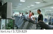 Купить «Люди бегут на беговым дорожкам в спортзале (таймлапс)», видеоролик № 3729829, снято 17 декабря 2010 г. (c) Losevsky Pavel / Фотобанк Лори