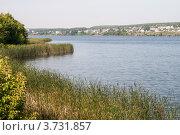 Беловское водохранилище. Стоковое фото, фотограф Олег Новожилов / Фотобанк Лори