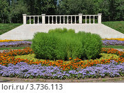 Парк «Сад будущего» или Парк Леоново. Москва (2012 год). Стоковое фото, фотограф lana1501 / Фотобанк Лори
