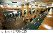 Купить «Московский метрополитен», видеоролик № 3736625, снято 30 апреля 2011 г. (c) Losevsky Pavel / Фотобанк Лори