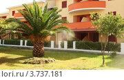 Система полива и пальма у отеля. Стоковое видео, видеограф Losevsky Pavel / Фотобанк Лори