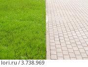 Каменная дорожка и трава. Стоковое фото, фотограф Денис Омельченко / Фотобанк Лори
