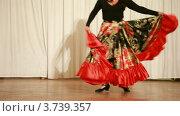 Купить «Цыганка в широкой красной юбке танцует на сцене», видеоролик № 3739357, снято 8 июня 2011 г. (c) Losevsky Pavel / Фотобанк Лори