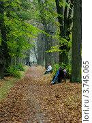 Аллея в Павловске (2007 год). Редакционное фото, фотограф Vladimir Pen / Фотобанк Лори