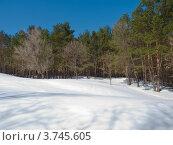 Купить «Зимний пейзаж с лесом», фото № 3745605, снято 25 марта 2012 г. (c) Максим Пименов / Фотобанк Лори