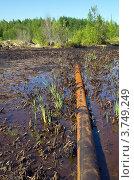 Купить «Последствия аварии на нефтепроводе. Разлив нефти», фото № 3749249, снято 12 августа 2012 г. (c) Икан Леонид / Фотобанк Лори
