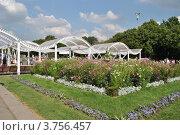 Купить «Парк Горького. Москва», эксклюзивное фото № 3756457, снято 12 августа 2012 г. (c) lana1501 / Фотобанк Лори