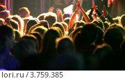 Купить «Много людей аплодируют на концерте, вид сзади», видеоролик № 3759385, снято 3 декабря 2011 г. (c) Losevsky Pavel / Фотобанк Лори