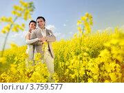 Счастливые жених и невеста стоят в рапсовом поле. Стоковое фото, фотограф Алексей Казнадей / Фотобанк Лори