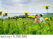 Жених и невеста с бокалами вина сидят на летнем лугу. Стоковое фото, фотограф Алексей Казнадей / Фотобанк Лори