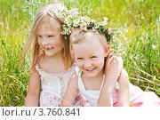 Купить «Две весёлые девочки на летнем лугу», фото № 3760841, снято 26 июня 2012 г. (c) LenaLeonovich / Фотобанк Лори