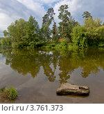 Камень в пруду на фоне деревьев (2012 год). Стоковое фото, фотограф Коршунов Владимир / Фотобанк Лори